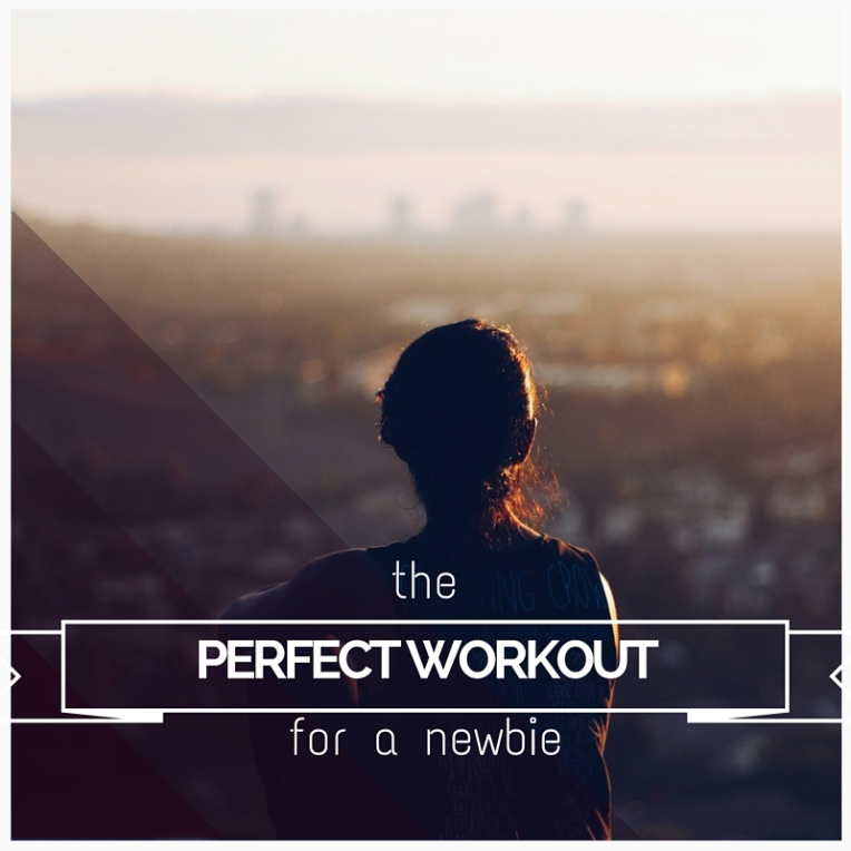 THE PERFECT WORKOUT(1)